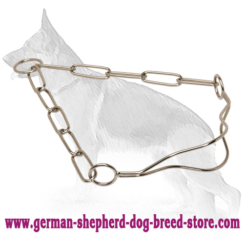 Perfect Look Chrome Plated Collar for Dog Show