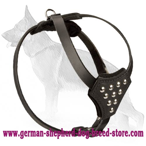Decorated Leather German Shepherd Harness for Puppies