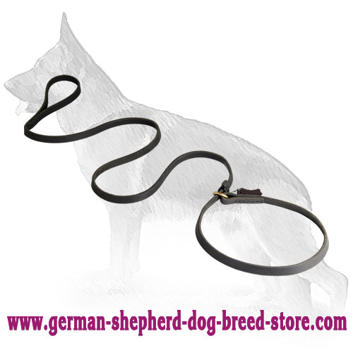 Fast Leather German Shepherd Leash/Collar Combo
