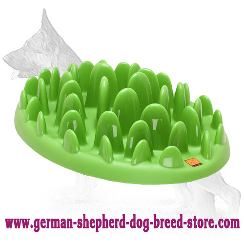 Small German Shepherd Plate for Healthy Feeding