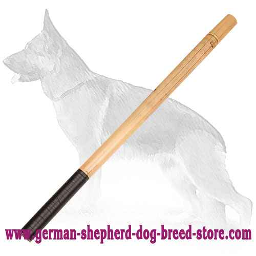 Training Bamboo German Shepherd Stick