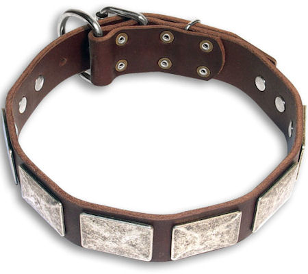German Shepherd Leather Dog Collar Massive Plates with Nickel Covering