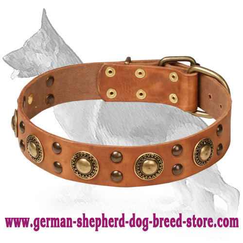 Mighty Space-like Adorned Leather Collar for German Shepherd