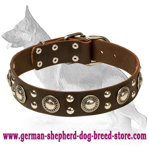 Deluxe Rock n Roll Leather Collar with Silver like Decor