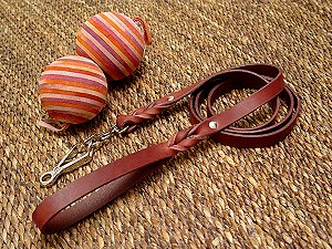 Leather dog leash with scissor type snap hook