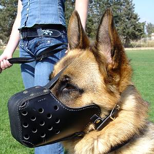 "Leather Dog Muzzle ""Dondi"" Style For German Shepherd"