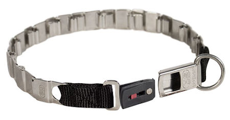 Stainless Steel Collar with ClickLock Buckle