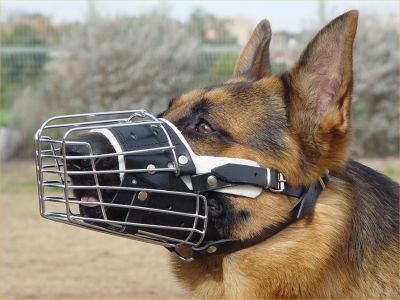 German Shepherd Basket Wire Dog Muzzle Fully Padded