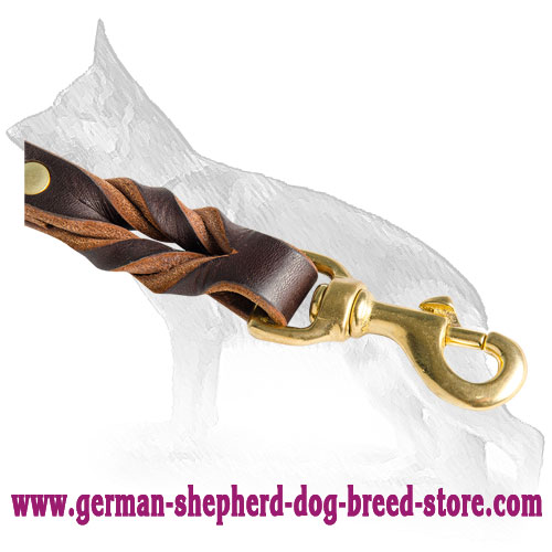 Brass Snap Hook On Dog Leash Rustproof