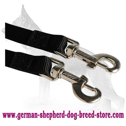 Nickel Plated Snap Hooks on German Shepherd Coupler