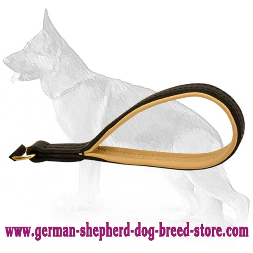 Astonishing German Shepherd Dog Leash