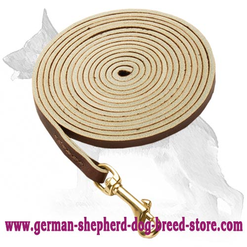 Fine German Shepherd Dog Leash
