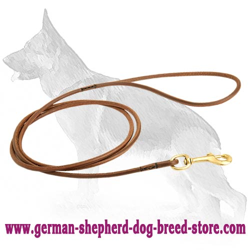 Unordinary German Shepherd Leash