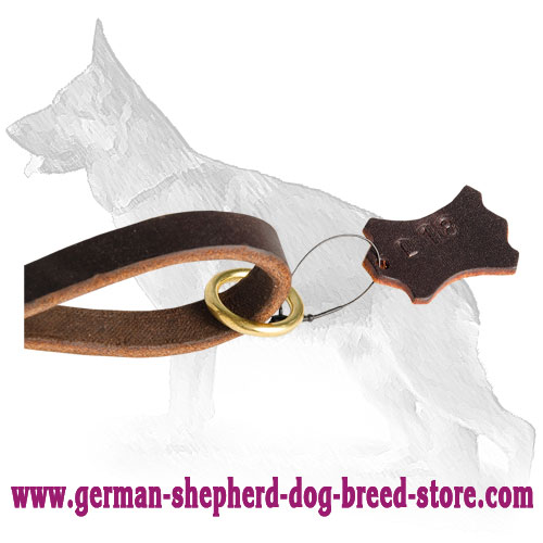 Brass Floating Ring on Leather German Shepherd Leash
