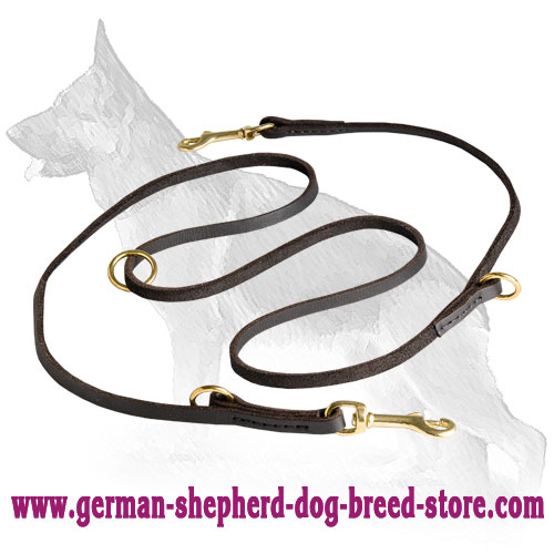 German Shepherd Leash with Brass Fittings