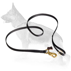 Strong Nylon German Shepherd Leash with Massive Brass Snap Hook