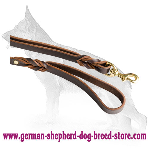 Snap Hook On Dog Leash Made Of Brass