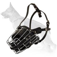 Time-Tested Wire Basket Dog Muzzle