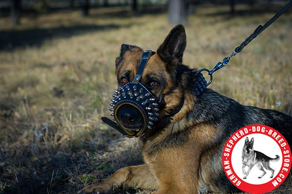 Leather German Shepherd Muzzle with Nappa Padding