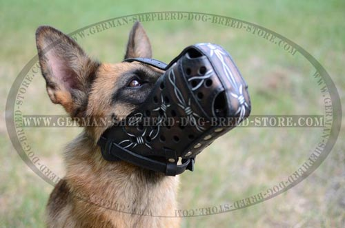 Miraculous German Shepherd Muzzle