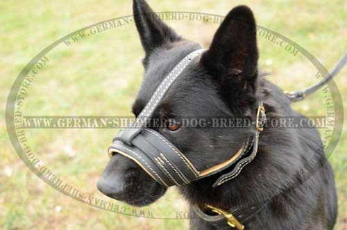 German Shepherd Dog Muzzle For Comfort Walking
