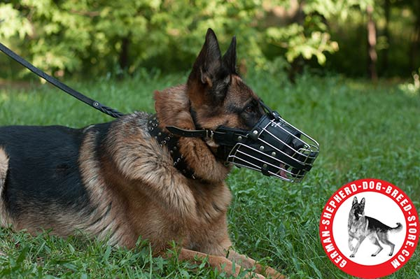 Any Activity Basket-type Metal Muzzle for German Shepherd