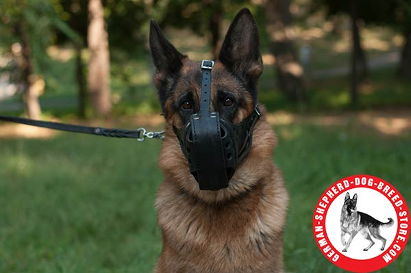 Comfortable Leather Dog Muzzle with Padded with Felt Nose Zone