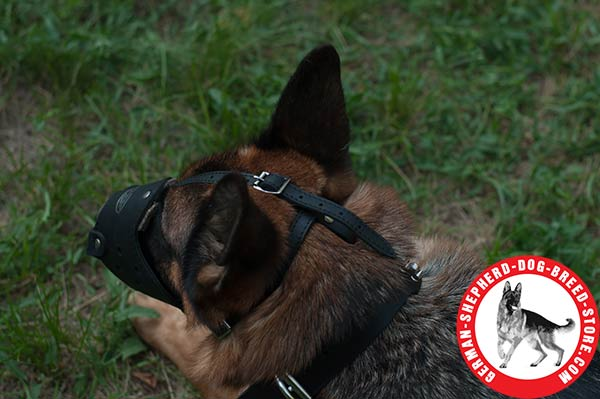 Leather German Shepherd Muzzle with Adjustable Straps