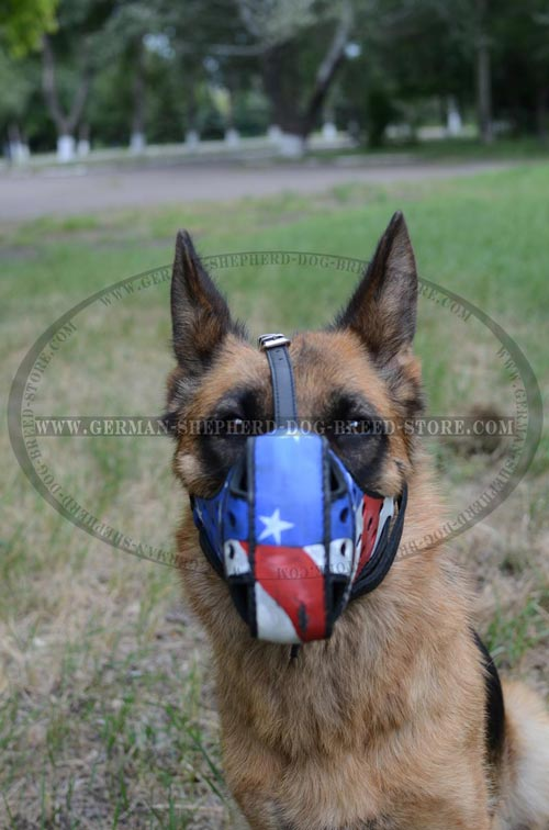 Leather German Shepherd Muzzle Painted with American Flag