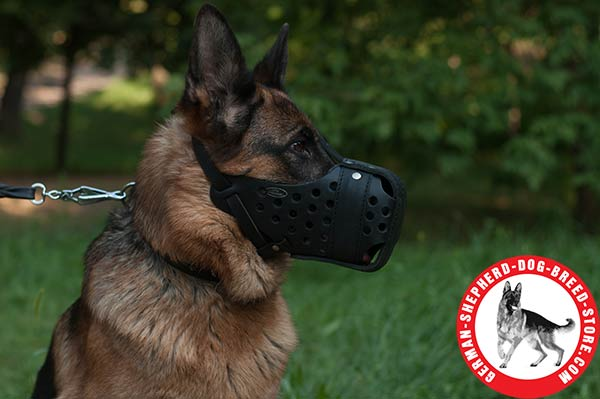 Great Leather German Shepherd Muzzle for Comfortable Training