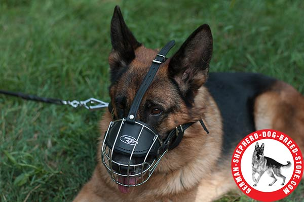 German Shepherd Metal Wire Cage with Adjustable Straps