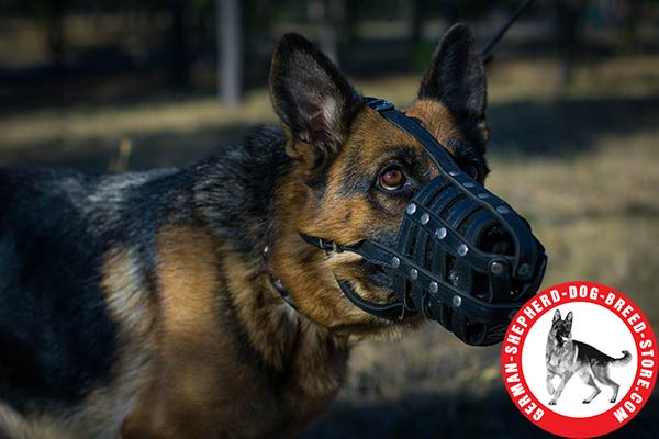 Genuine Leather German Shepherd Muzzle for Daily Use
