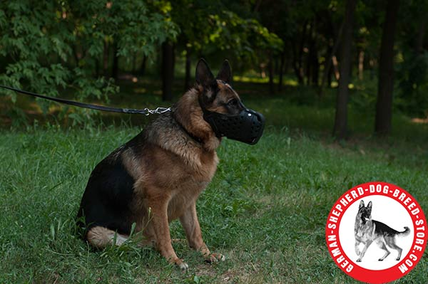 German Shepherd Muzzle for Pro Training