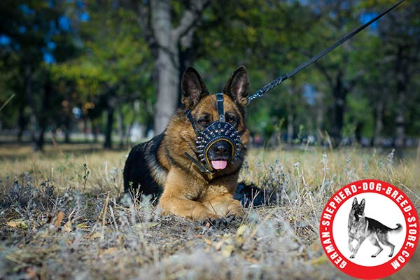 Stylishly Decorated Leather Dog Muzzle for German Shepherd