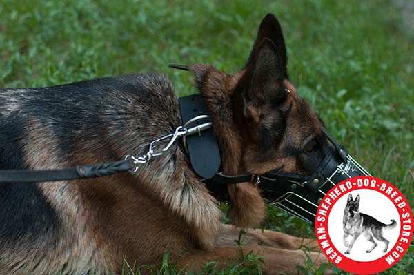 Durable and Comfortable Padded Wire Cage for German Shepherd