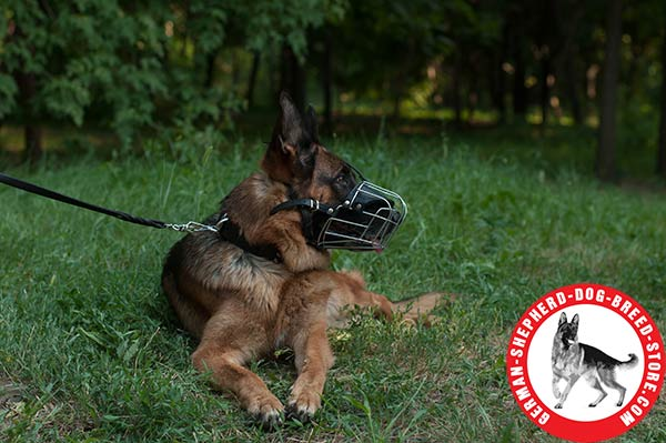 Everyday German Shepherd Metal Muzzle of Light Weight