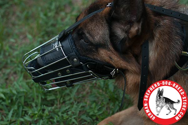 Comfortable Wire Basket Muzzle with Soft Padding