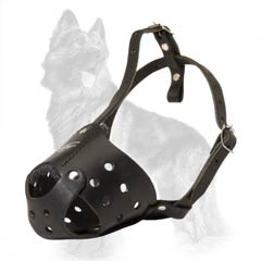 Comfy For Everyday Walks German Shepherd Muzzle