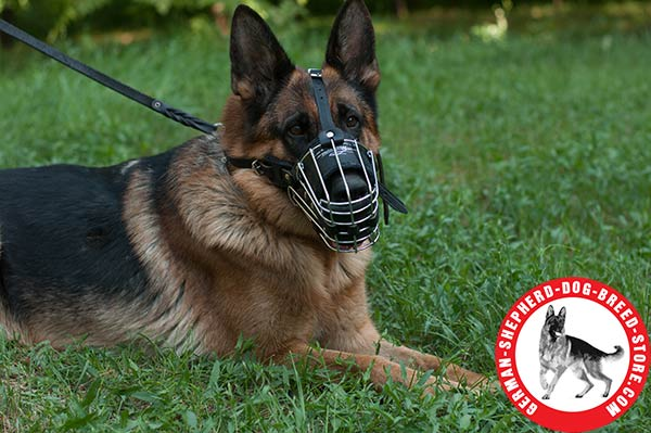 Super Strong Padded Wire Cage for German Shepherd