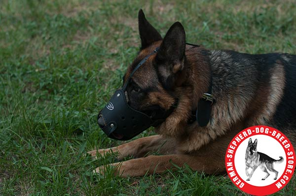 Universal Leather Muzzle for German Shepherd