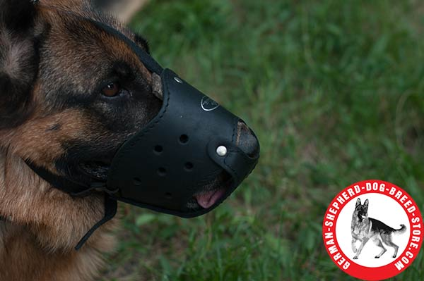 Perfectly Ventilated Leather Muzzle for German Shepherd