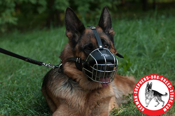 Durable Wire Basket German Shepherd Muzzle
