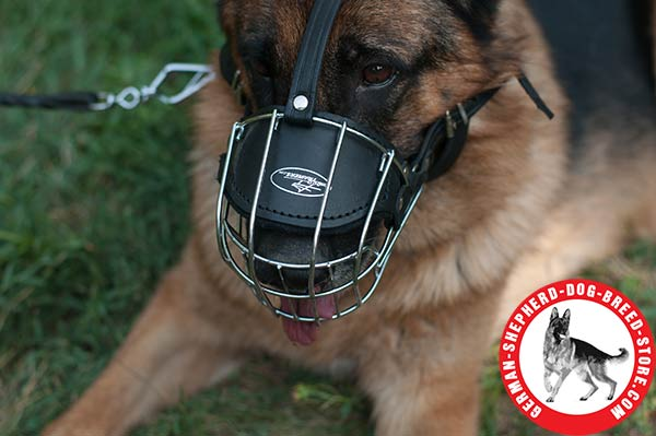 High-quality Wire Muzzle with Padded Nose for Better Comfort